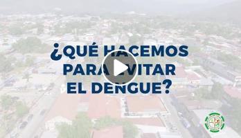 ¿Qué hacemos para evitar el dengue?