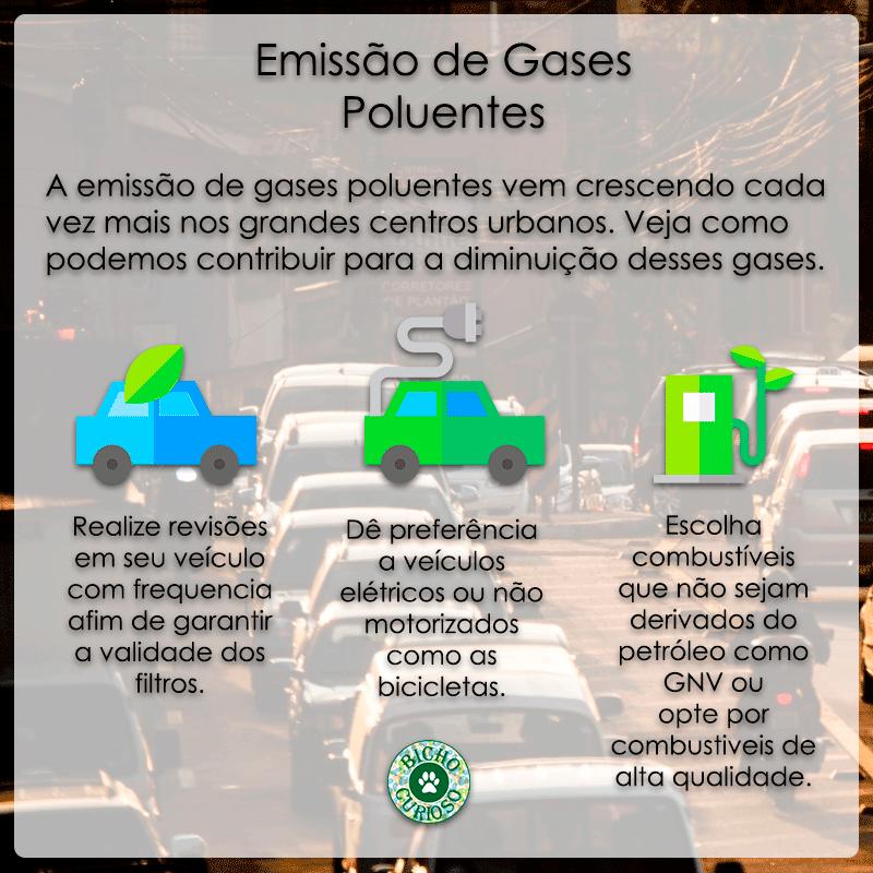 preserve a natureza, gases poluentes