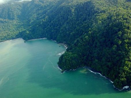 Península de Osa, uno de los destinos en preferencia  de usuarios de plataforma Airbnb en Costa Rica