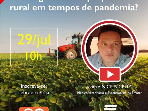 """Sebrae fará Webinar dia 29 sobre """"como gerenciar a propriedade rural em tempos de pandemia"""""""
