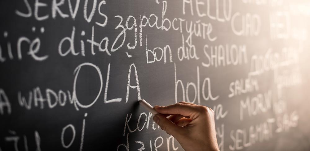 homeschool spanish, homeschool sign language, homeschool french, homeschool german, homeschool hebrew, homeschool curriculum, homeschool during covid-19