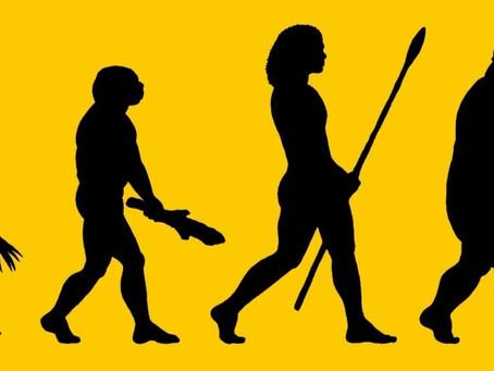 The Evolution of Taste Buds: Why We Crave