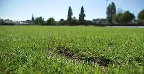 U13 Haslingfield 1 - 2 Potton Colts