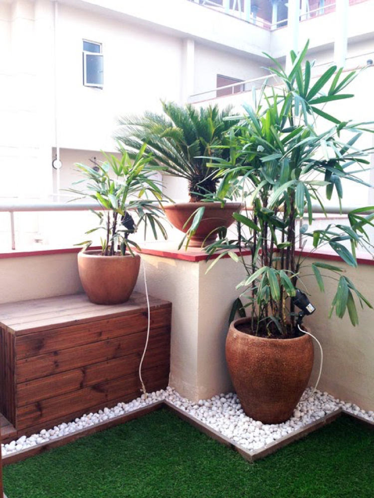 Undoubtedly, houses with plants look much more tempting than the ones stuck in between the walls. It can be a revolutionary move to bring more plants in the house you stake up for rent. If you hire an interior designer Kolkata, you will find him/her suggesting the same. It not only gives your home a funky look but is healthy in certain circumstances as well.