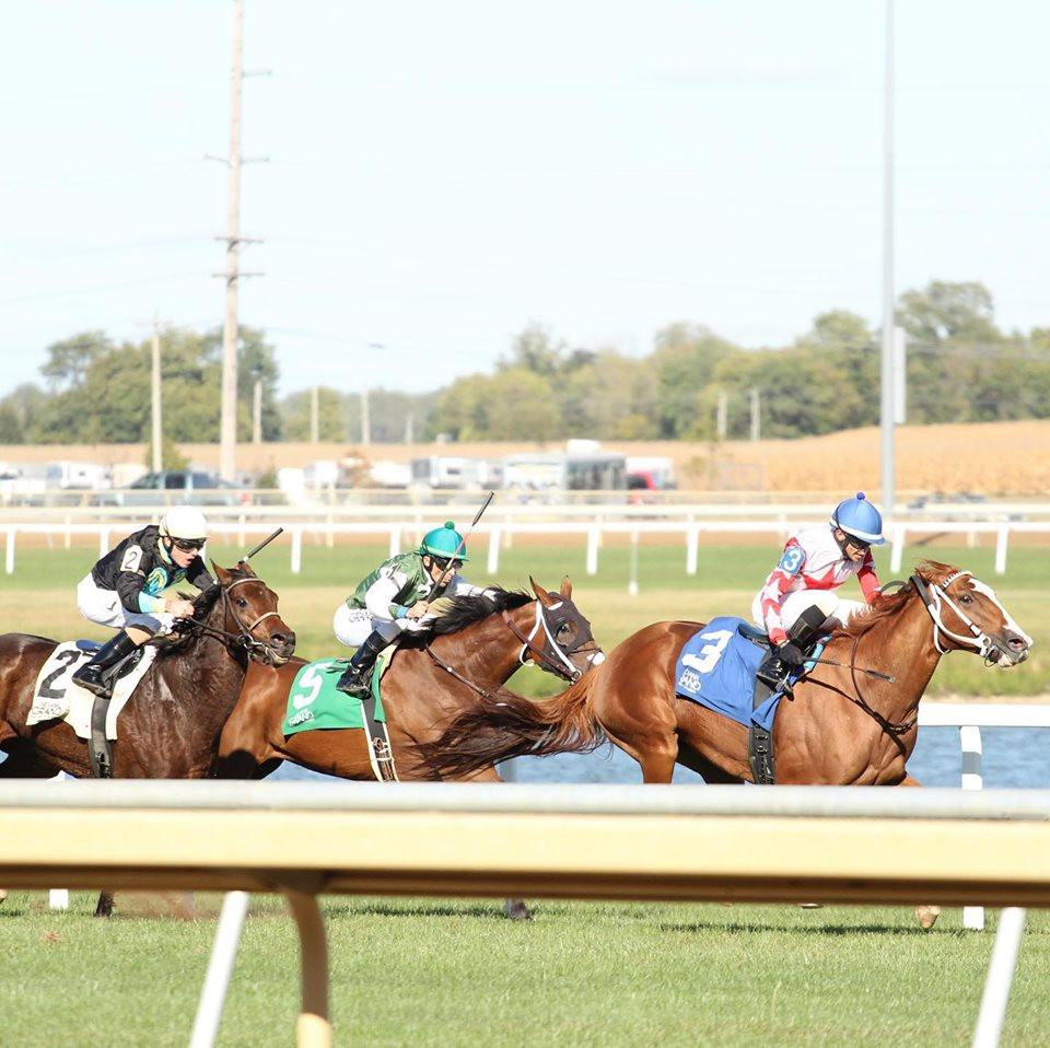Horse racing at Indiana Grand