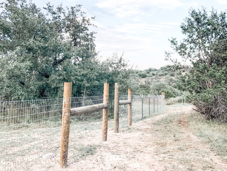 How to Build a Farm Fence | Step 1: Plan the Fence Line (1/4)