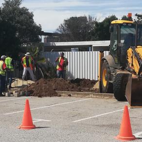 Transnet Port Authority Port of Port Elizabeth   Case Study