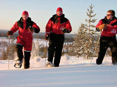 Tripping the white fantastic in Lapland
