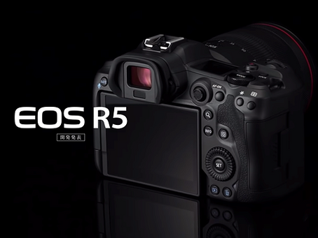CANON EOS R5 and R6