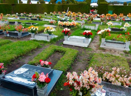 Mañana el COE decidirá sobre reapertura de cementerios durante el feriado