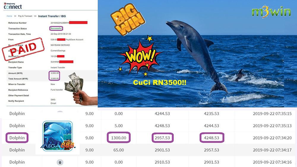 Mega888 Dolphin game winning record.