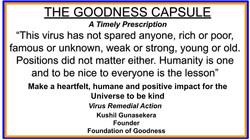 GOODNESS CAPSULE 12