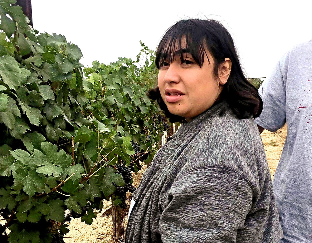 Woman with a disability in vineyard.