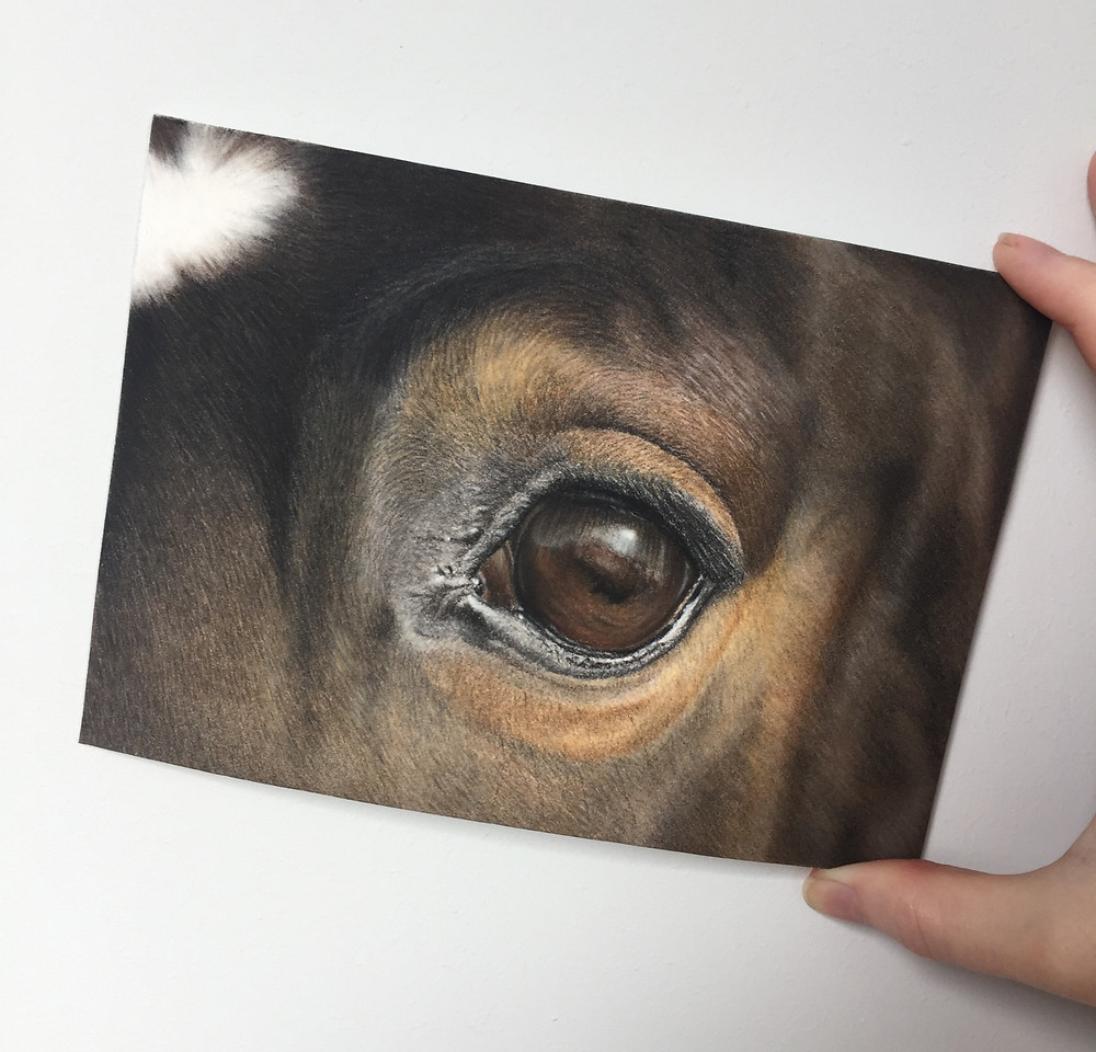 A photograph of a postcard sized piece of pastel artwork. It is a study of a bay horse eye in a realistic style.