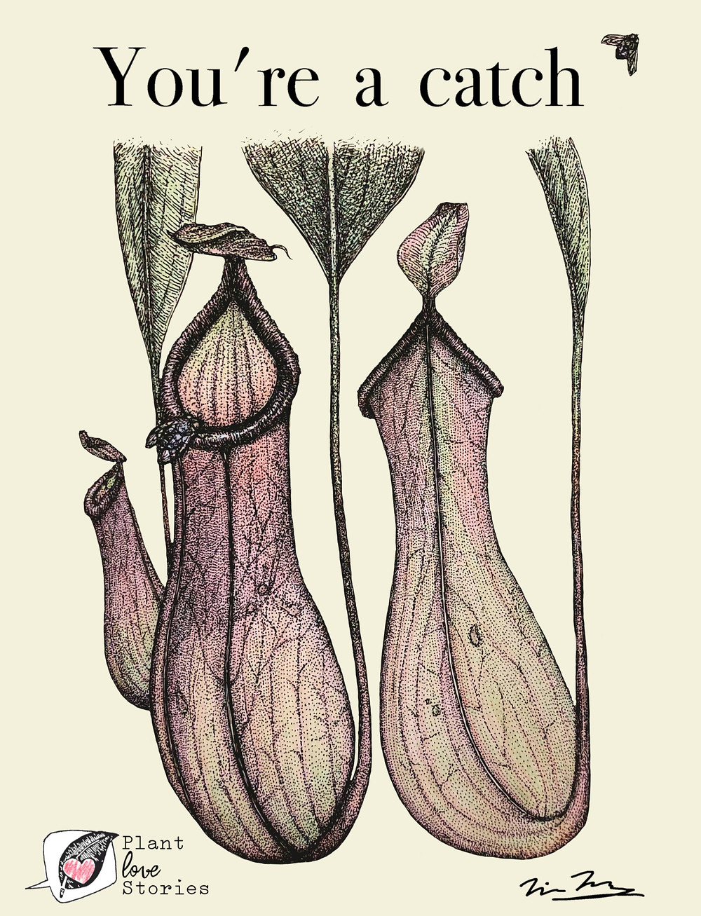 "Illustration of a pitcher plant with the words, ""you're a catch"""