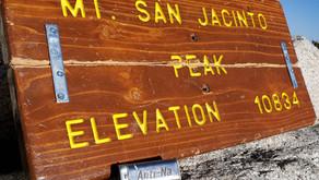 AntiNa Chews v. 19.5 Miles of San Jacinto
