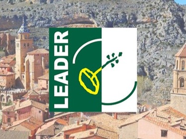 ¿Qué son las ayudas Leader?