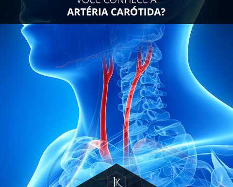 Você conhece a artéria carótida?