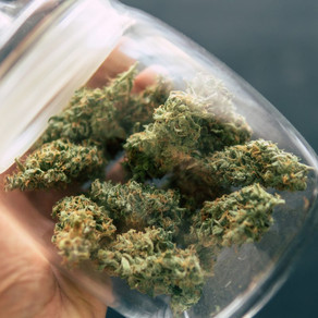 THC Tolerance: Here's Why T-Breaks Work So Quickly
