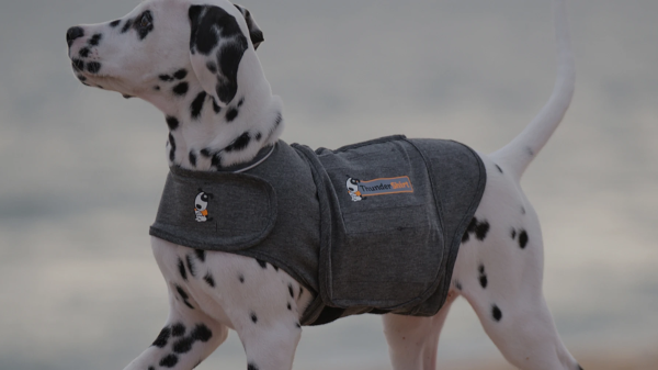 ThunderShirt Dog Anxiety Jacket – Amazing Dog Anxiety Calming Solution w/ 80%+ Success Rate