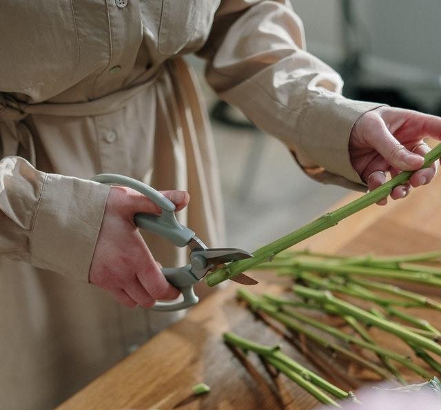 Cutting flower steams