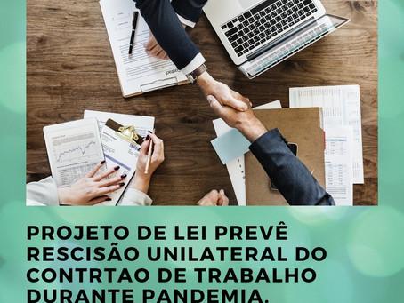 Projeto de Lei prevê rescisão unilateral do contrato de trabalho durante pandemia