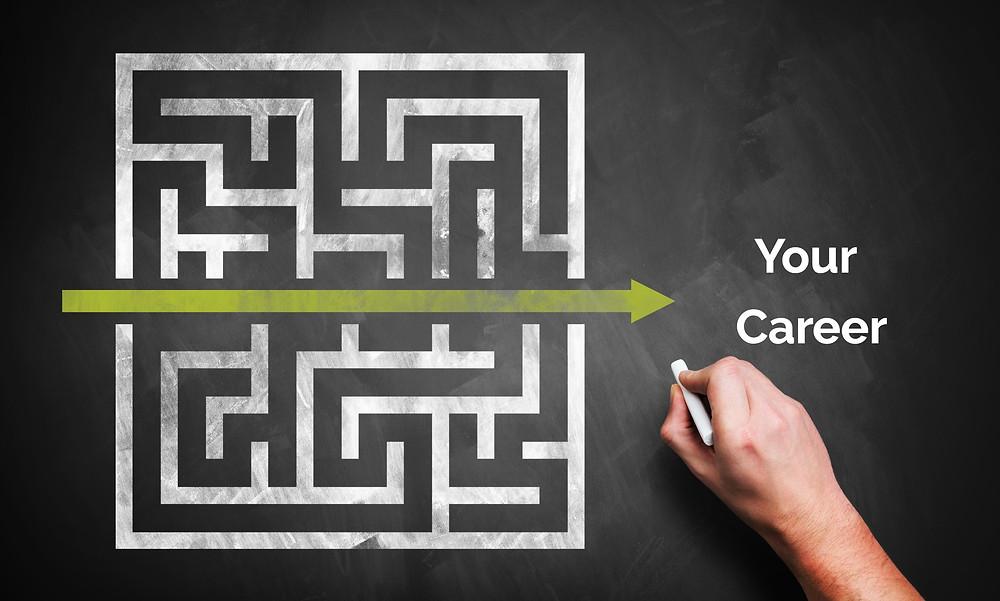 career maze career decision