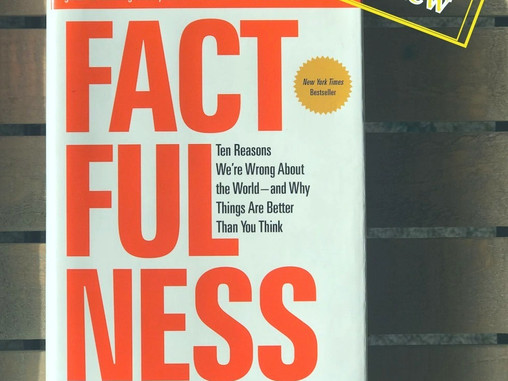 Just Factfulness
