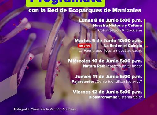 PROGRAMACIÓN DE LA RED DE ECOPARQUES DE MANIZALES DEL 8 AL 12 DE JUNIO