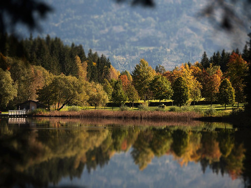 Herbst am Tristachersee