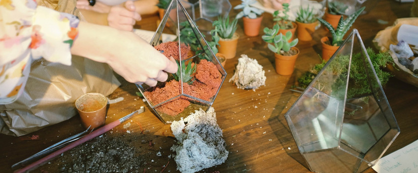 Creating gardens in glass