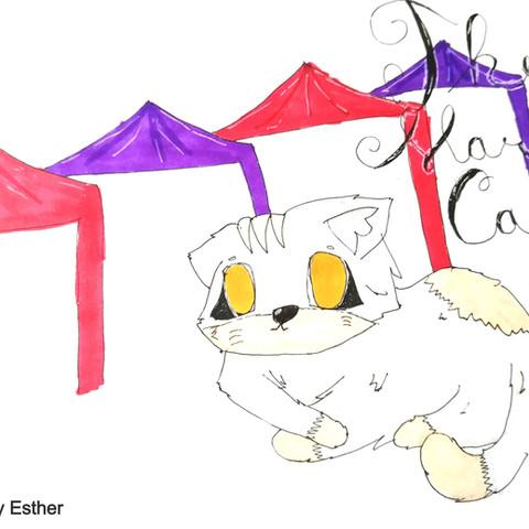 Diary of a Market Cat