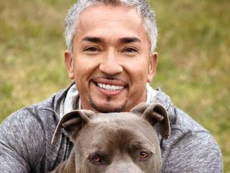 Cesar Millan Comments on His South Park Appearance