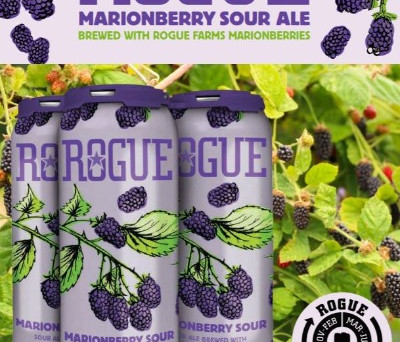 Marionberry Sour - BACK from Rogue Ales!