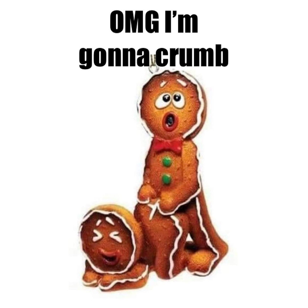 OMG I'm Gonna Crumb. Gingerbread sex
