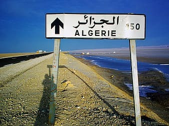 Pharmacovigilance requirements in Algeria - Interesting Facts!