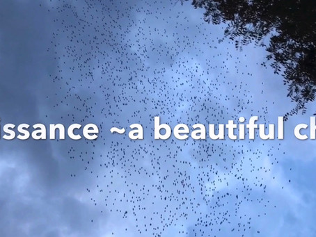 『Renaissance~a beautiful chaos~』