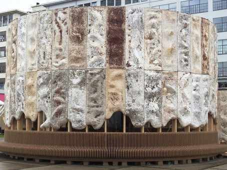 This mushroom building cleans our air as it grows