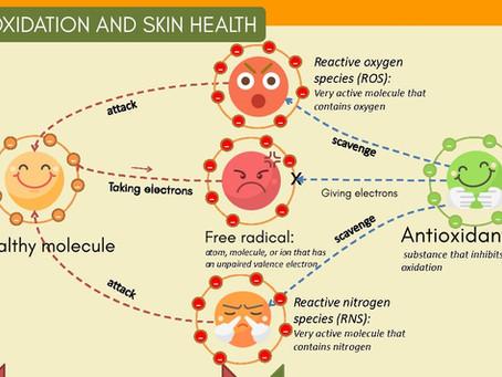 [Cosmetic Ingredients 101] Anti-Aging cream Analysis - Antioxidants Infographic