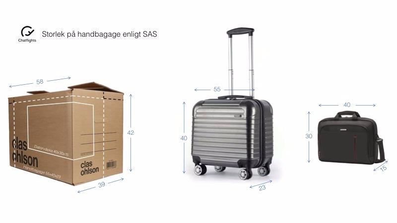 Sas Regler Handbagage