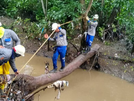 A causa de las fuertes lluvias, 13 municipios del departamento de Sucre sufren fallas eléctricas