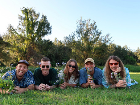 Interview: Local Safari Take Us On A Guided Tour