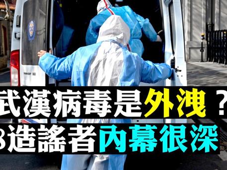 【大宇新拍】武漢觀眾6點爆料;新病毒發現者,曾疑慮「人工病毒」外洩!中國疾控中心主任高福「揭」人際傳染瞞報鐵證;8個造謠者幕後不簡單 | 新聞拍案驚奇 大宇