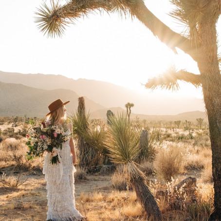 Top 10 Elopement Dresses for 2020 Brides under $700