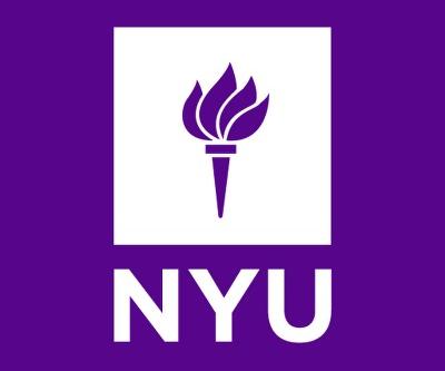 Neuroengineering Lab - NYU