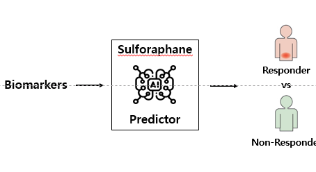 Artificial intelligence-driven responder prediction on the anti-dementia effect of sulforaphane