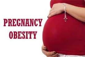 Mother's obesity affects the child brain development