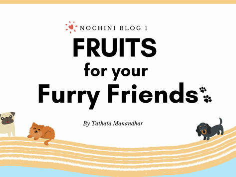 Fruits for your Furry friends