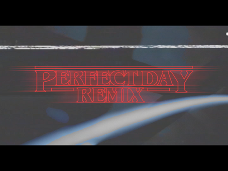 PERFECT DAY NATHAN C REMIX VIDEO
