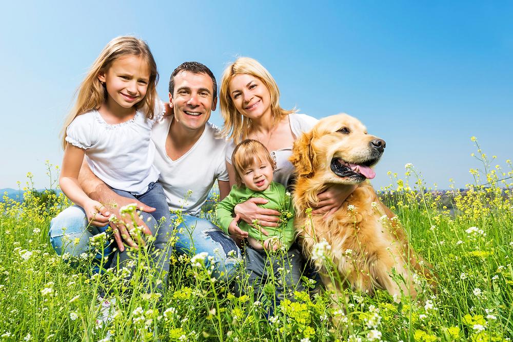 Четири члено семејство во природа во придружба на домашниот миленик